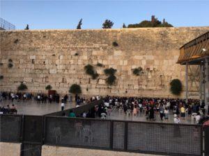 Izrael_uchenici_stenata_na_placha